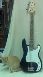 Бас-гитара Elenberg EG-3060 в хорошем состоянии.